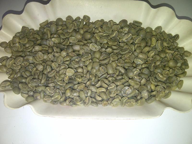 Tips Memilih Green Bean Arabika